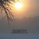 february-morning-sun-and-snow-in-maine